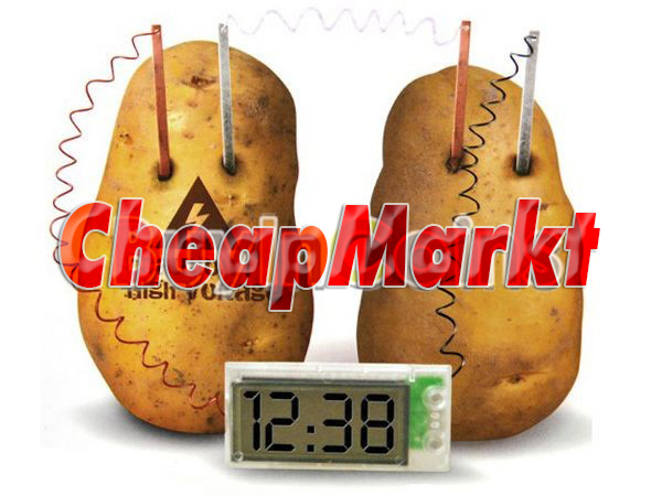 potato clock science project Potato clocks can help you tell the time without depending on batteries, learn how to make a potato clock for your school science fair or science projects.
